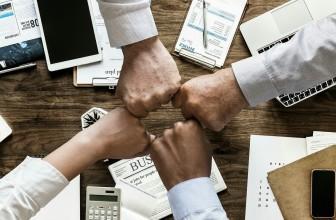Développement des organisations, l'art de croiser les compétences